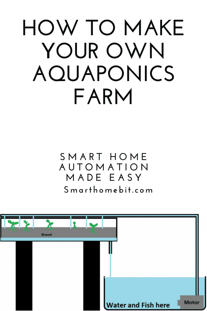 How to make your own aquaponics farm