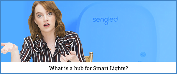 What is a hub for Smart Lights?